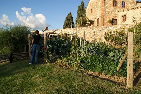 Podere Finerri: Vegetable Garden
