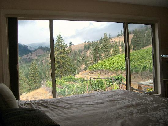 Grape Escape Guest House: Room With a View