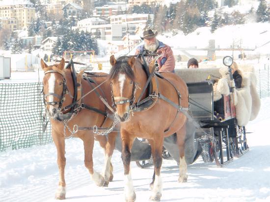 St. Moritz, Svizzera: Kutsche auf dem gefrorenen See