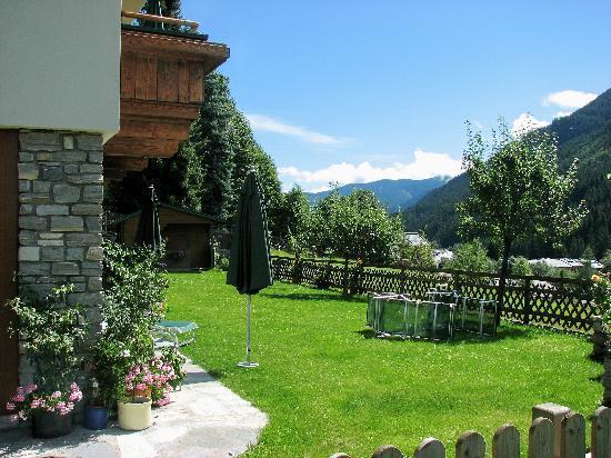 Kohlmais : Garden