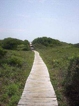 Salter Path, Kuzey Carolina: boardwalk to the beach