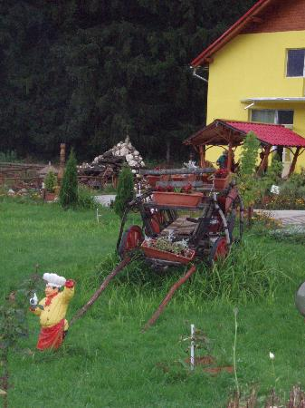 Pensiunea Caprioara: Jardin: La charrette roumaine tradionnelle
