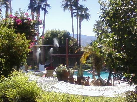 Desert Paradise Gay Men's Resort: gardens and pool
