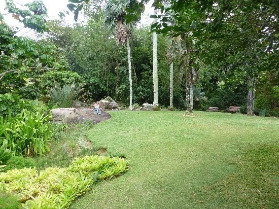 Constance Ephelia: giardino botanico