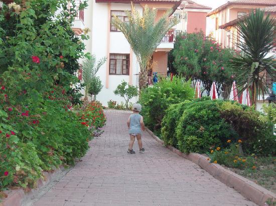 show user reviews smartline sunlight garden side manavgat turkish mediterranean coast
