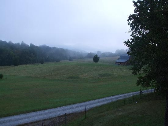 Pioneer Cabins & Guest Farm: early morning view from our cabin