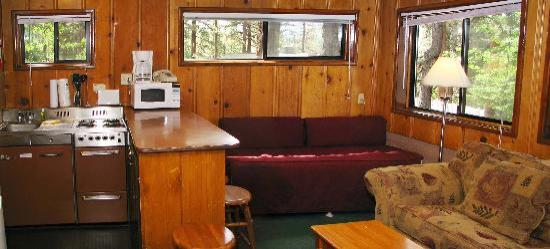 Pine Cone Resort: Living room and Kitchenette