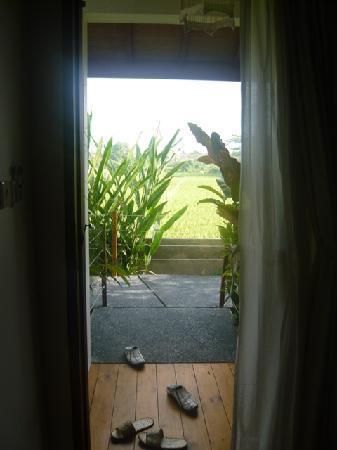 The Studio Bali: Main Door