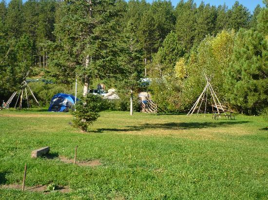Crooked Creek Resort and RV Park: grounds
