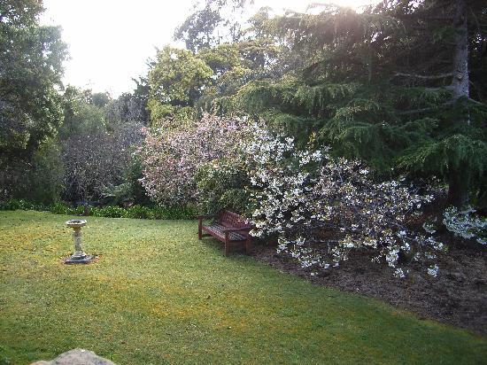 Donalea Bed & Breakfast: Front Garden of Donalea