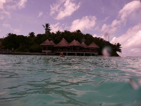 Baros Maldives: The island from me swimming in the reef