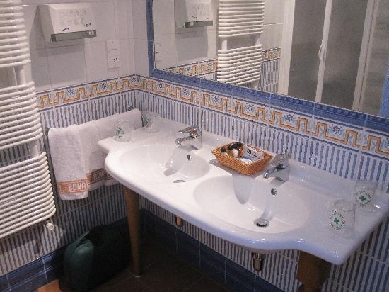 Hotel Bonavida : sdb