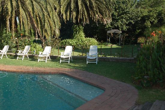 African Gardens Apartments: Pool