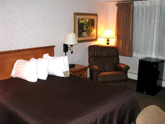 Best Western Plus Kelly Inn : Queen Bed with old, soft mattress