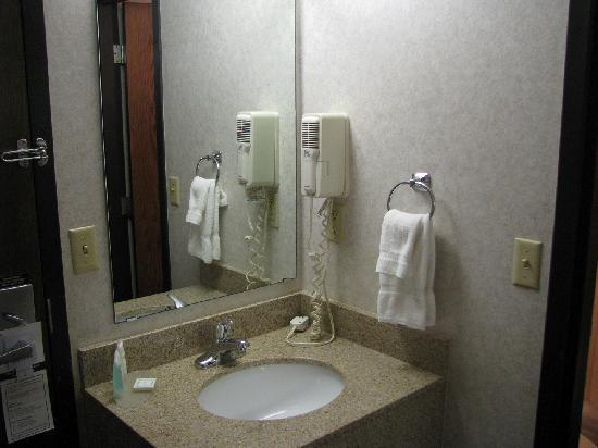 Best Western Plus Kelly Inn: Sink area with hair dryer