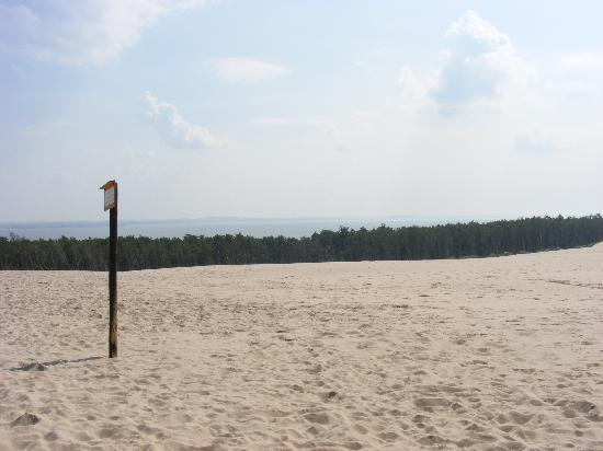 Slowinski National Park: sulle dune