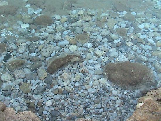 Mochlos, กรีซ: Clarté de l'eau