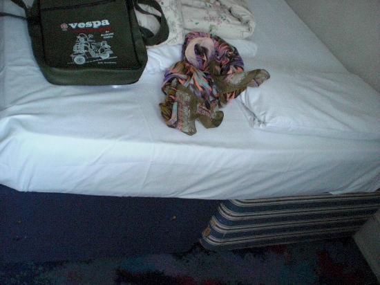 Acacia Hostel: kaputtes Bett