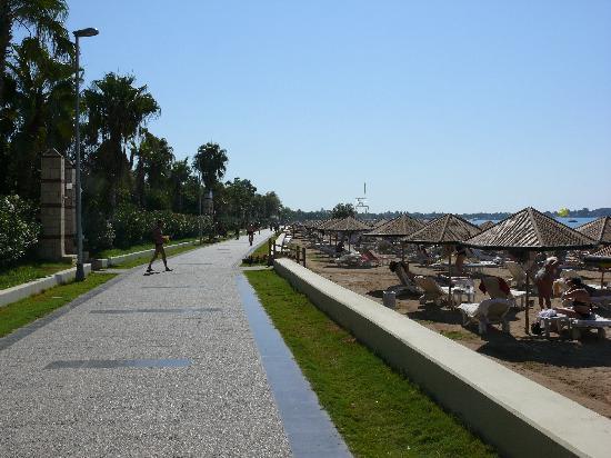 Palm d'Or: Side Promenade