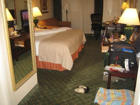 Holiday Inn Mt. Kisco (Westchester Cty): My room from the door