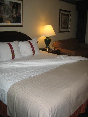 Holiday Inn Mt. Kisco (Westchester Cty) : The King sized bed