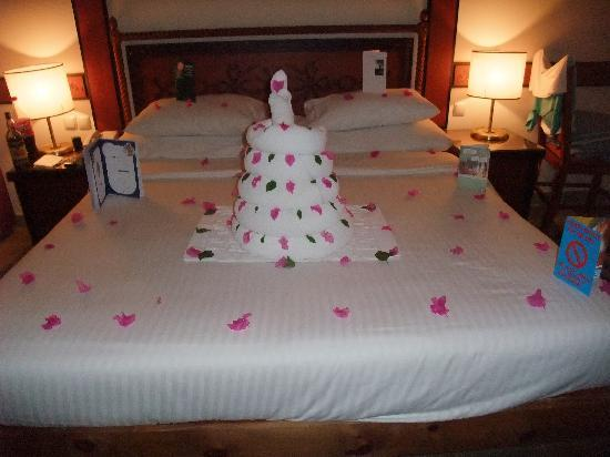 Pleasant Chris Birthday Cake Picture Of Tiran Island Hotel Sharm El Personalised Birthday Cards Sponlily Jamesorg