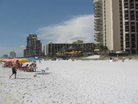 Hilton Sandestin Beach, Golf Resort & Spa: beach