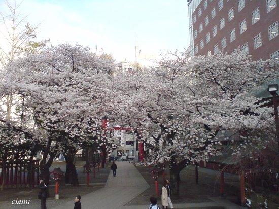 Hanazono Shrine: 花園神社