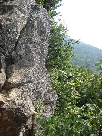 Bearfence Mountain: Bearfence Mtn.