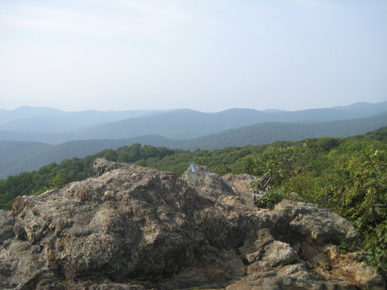 Bearfence Mountain