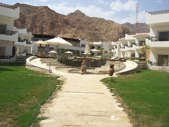 Sea Sun Hotel Dahab: from the beach