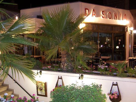 Dasonia restaurant for Ristorante cinese da sonia