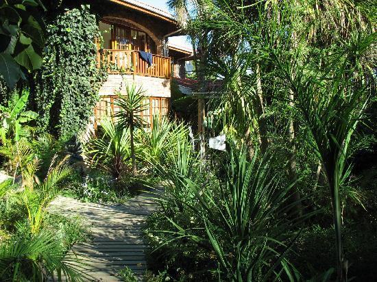 بامبو ذا جيست هاوس: the garden