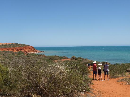 Shark Bay : Francois Peron National Park