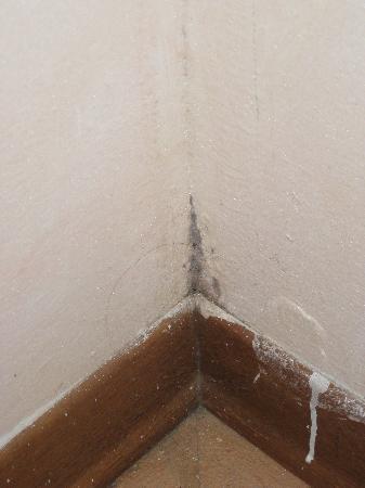 schimmel im wohnzimmer 2 - bild von borgo casato, castelnuovo, Wohnzimmer