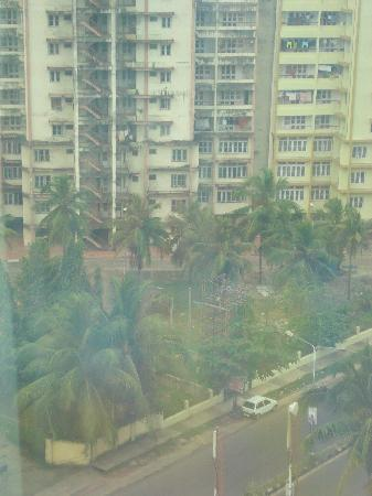 Radisson Blu Kochi : View from the room