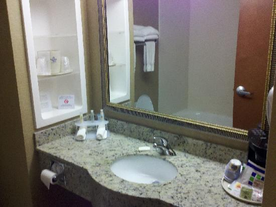 Holiday Inn Express Hampton South - Seabrook : Bathroom