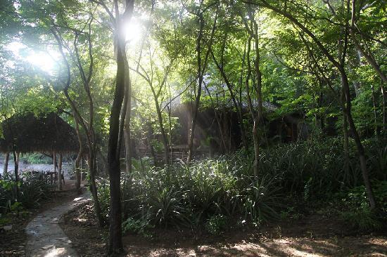 Aqua Wellness Resort: Rays of light near beachfront dining