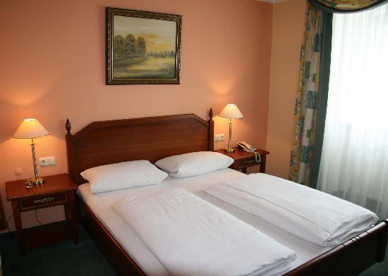 Hotel Donauhof : The room