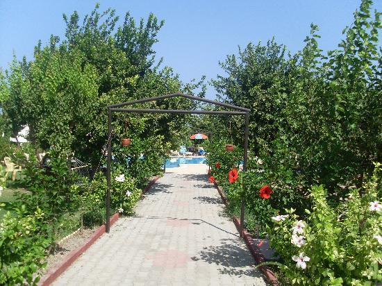 Lapida Hotel: Garden leading to the pool