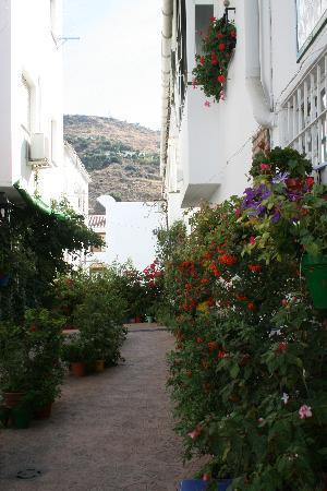 Hotel Al-Andalus: Patio Andaluz