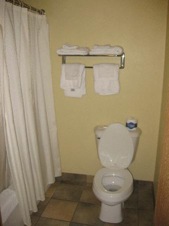 Commodore Resort: Clean bathroom