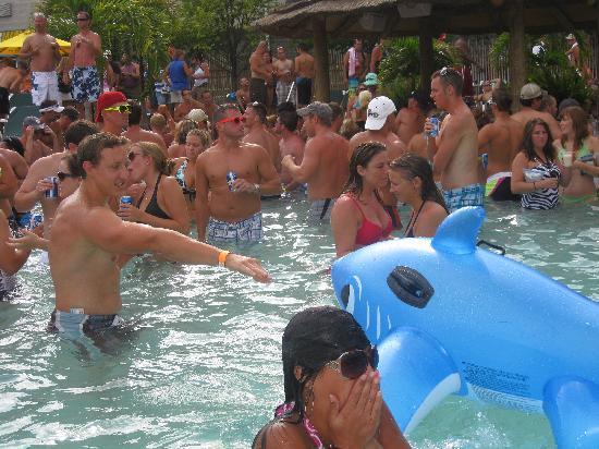Commodore Resort : Crazy