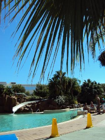 Palas Pineda : Pool