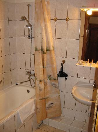 Hotel Sighisoara: bathroom