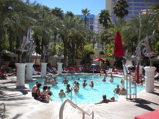 go pool picture of hilton grand vacations at the flamingo las