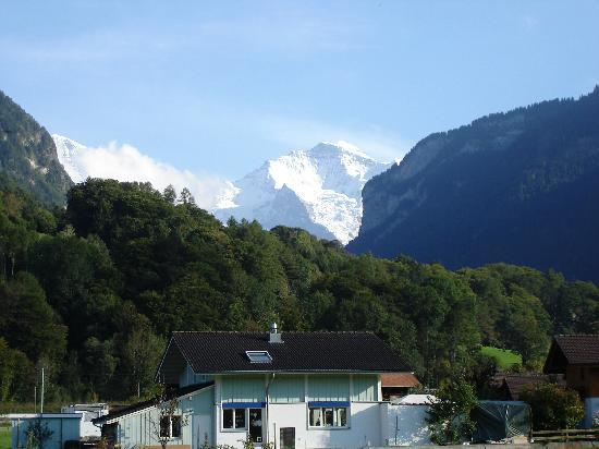 Jungfrau Hotel : View from front of hotel