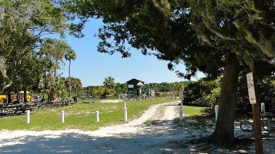 Hanna Park Beach Jacksonville Fl
