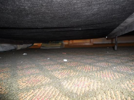 Days Inn Hurricane/zion National Park Area: Dirty Under Bed