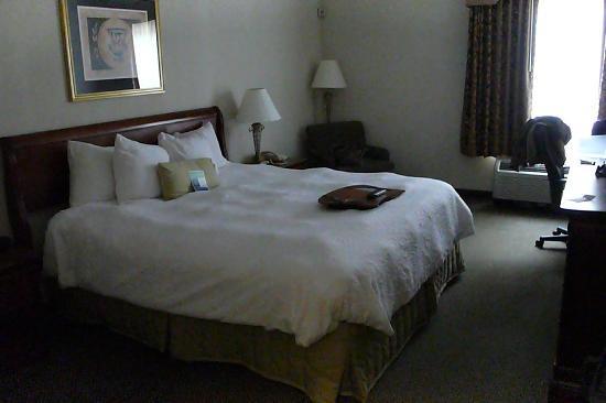 Hampton Inn Tulsa-Sand Springs : Zimmer
